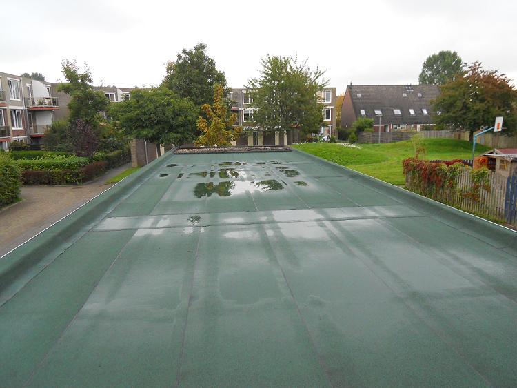 groen dakdekking lood